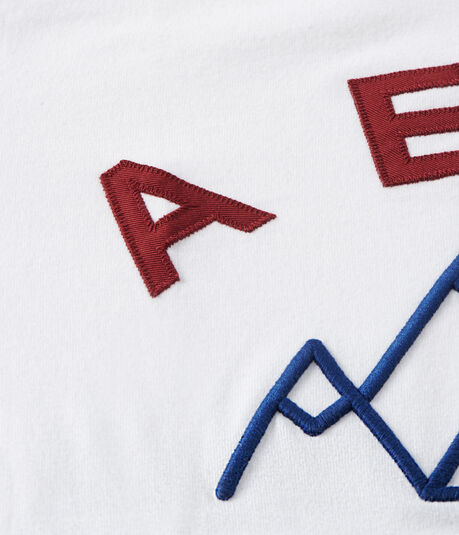 Aero Mountains NY Logo Graphic Tee