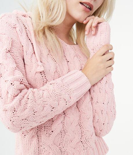 LLD Solid Chenille Hooded Sweater