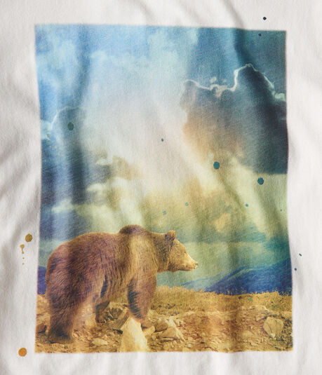 Free State Sunshine Bear Graphic Tee