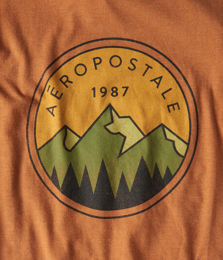 Aeropostale 1987 Mountain Graphic Tee